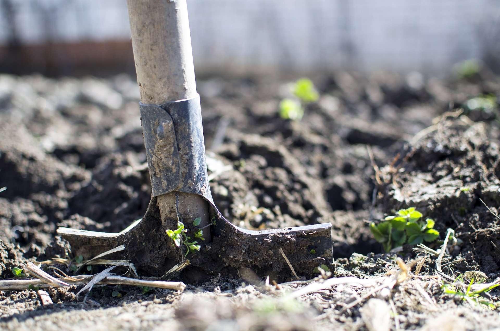 Myjka ciśnieniowa w rolnictwie jaką wybrać?